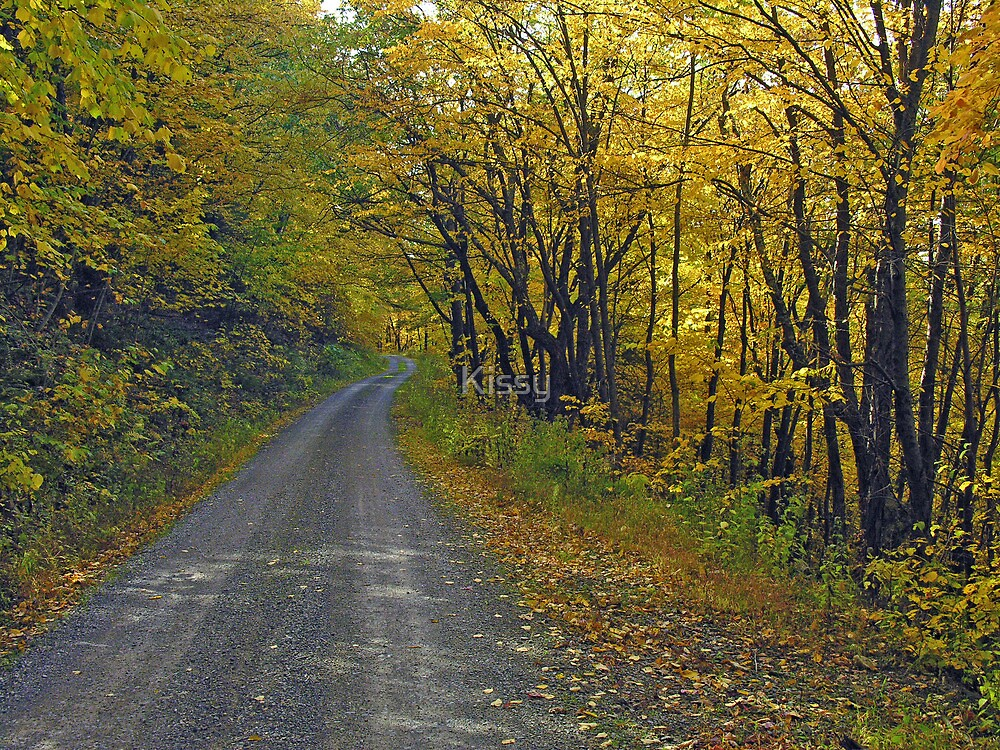 Follow The Yellow Hick Road by Kissy