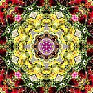 Dahlia's in Bloom Fractured by Matthew Sims