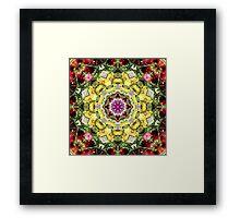 Dahlia's in Bloom Fractured Framed Print
