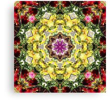Dahlia's in Bloom Fractured Canvas Print