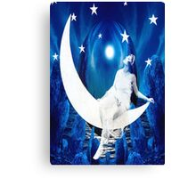 Starlight Canvas Print