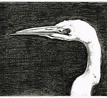 White Egret Art - The Great One - By Sharon Cummings by Sharon Cummings