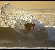 Golden Cutback by Greg Noble