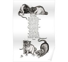 Ode To A Rat Poster