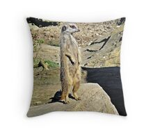 """ ALL Clear Chaps"" Throw Pillow"