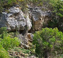 Sandstone Cliff Face by Rick Playle