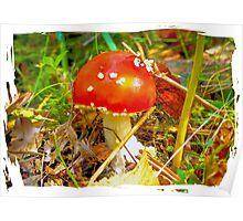 Eat the mushroom and die Poster