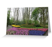 Garden With Flowers Greeting Card