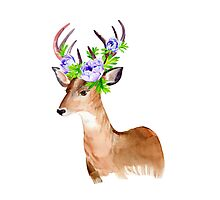 Oh, deer! Photographic Print