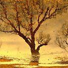 Water reflection X I!... by sendao