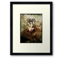 The wishing seat Framed Print