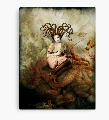 The wishing seat Canvas Print