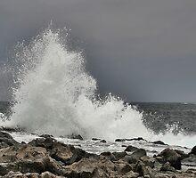 Splash - 4 by dgbimages