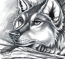 Wolf Grey by Mayra Boyle