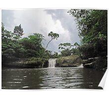 a mid-summer, jungle,  dream Poster
