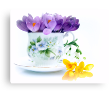 A cup full of Spring Canvas Print