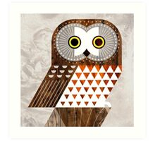Saw Whet Owl Art Print