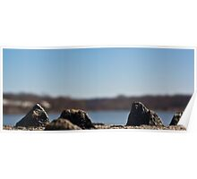 Lakefront Mountains Poster