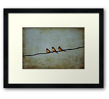 Three On A Wire Framed Print