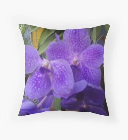 Spring in Florida  Throw Pillow