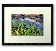 The Green Stuff Framed Print