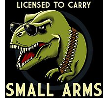 Small Arms Photographic Print