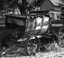 """Water Wagon"" by Gail Jones"