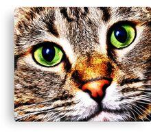 Max Cat Canvas Print