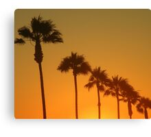 Palms Sunset Canvas Print