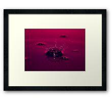 Water Crown Framed Print