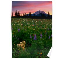 Alpine Garden Poster