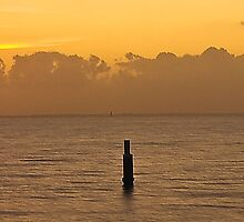 Shorncliffe by gamaree L
