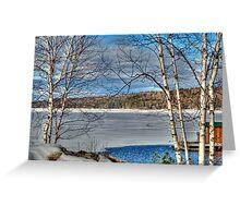 Scenic Views of Lake Sunapee in Winter Greeting Card