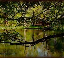 cabin by lake by vigor