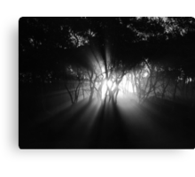 Creeping Canvas Print
