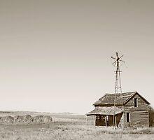 Sodbuster's Home by Rachel Sonnenschein