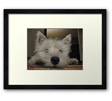 Just Play With Me For a Minute?? Please????? Framed Print