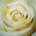 White Rose by mhubbard
