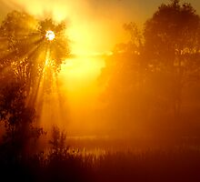 Sacred Sunrise - Queensland Australia by AMP  Al Melville Photography