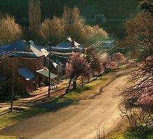 Carcoar, NSW by Linda  Appleby