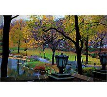 Central Park Subway Photographic Print