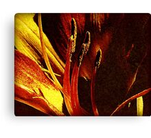 Conjured Canvas Print