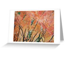 Fall Colors At  Cape May Greeting Card