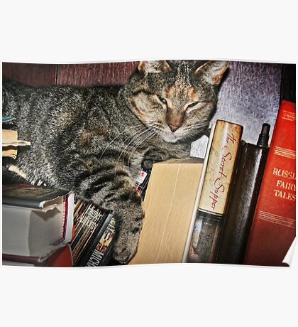 The Well Read Cat Poster