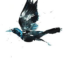 Attack of the Grackle by Cat Graff