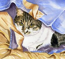 Cat in Bag by FranEvans