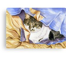 Cat in Bag Canvas Print