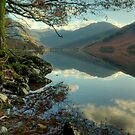 Buttermere..Rocks,Roots and Reflections by Jamie  Green