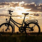 Bicycle silhouette... South Africa by Qnita
