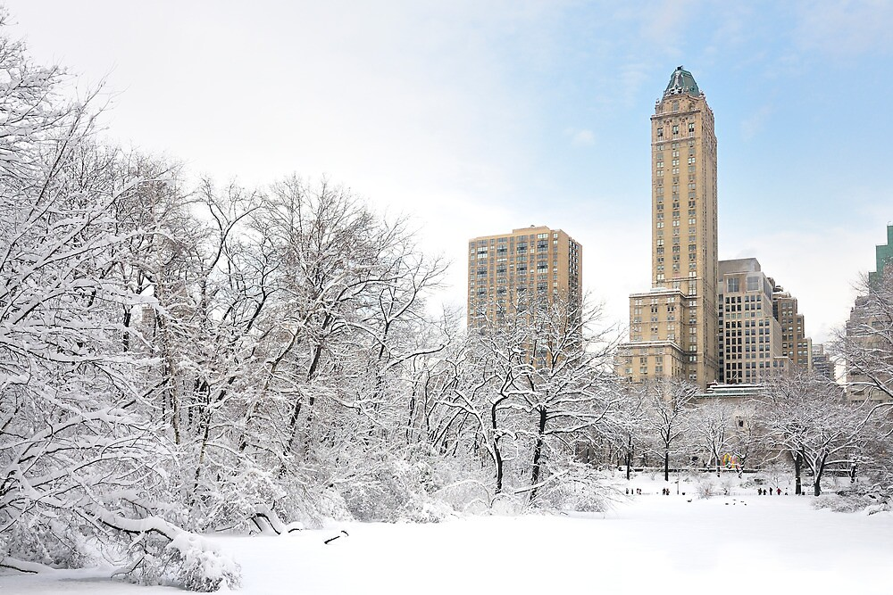 Central Park South  2- New York by Yannick Verkindere